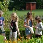 vier Kinder erforschen den Garten